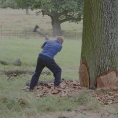 New Pinball Dictionary: Chopping Wood