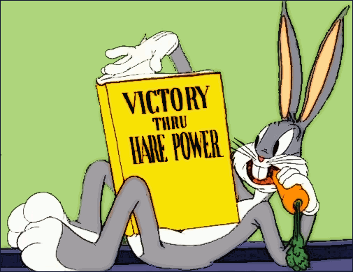 Bugs looks through the AC/DC ruleset.