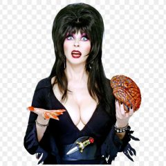 Elvira House of Horrors – Analysis by Cary Hardy