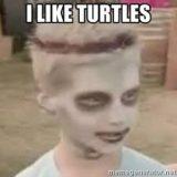 Teenage Mutant Ninja Turtles Professional