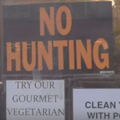 Hunting Laundromats and Circuses
