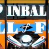 An anonymous donor provides a $79,000 donation toward Pinball Hall of Fame