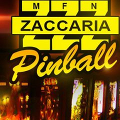 PAPAtv – What's happening here?! It's Zaccaria Pinball!