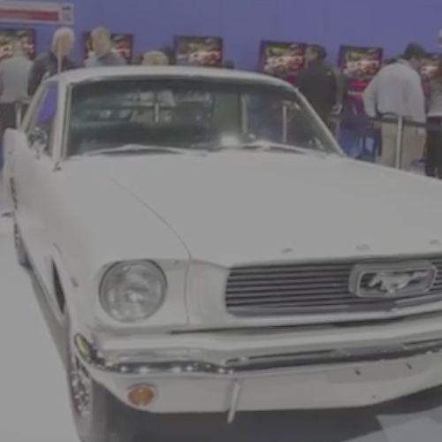 More Mustang [New code drops!]