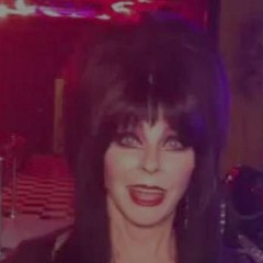 Elvira: Mistress of the Dark, Friend of Pinball