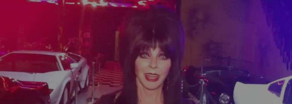 Elvira: Mistress of the Dark, Friend of Pinball