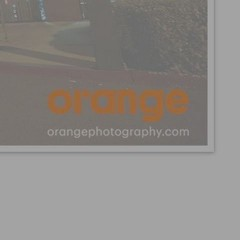 INDISC: The Orange Photography Photo Set