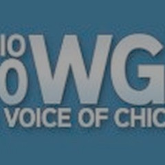 WGN Radio Interviews Gary Stern