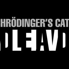 Schrodinger's Pinball