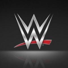 WWE Pinball King of the Ring Tournament